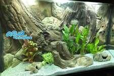 3D Amazon Root Background Wall For Aquarium Fish Tank Vivarium Reptile Polyresin