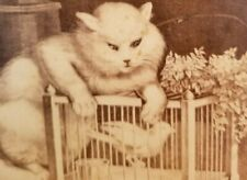 "Circa 1860s Cabinet Card Cartoonish ""THE HUNTING PARTY"" WHITE CAT LEANING BIRD"