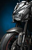 LIGHTECH Frontfender Kotflügel Carbon Kawasaki Z800 2013-2016