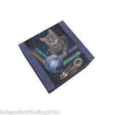 Fortune Teller Anne Stokes Collection Cat  Mirror Trinket Box Noche