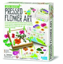 Green Creativity Pressed Flower Art kit by 4M