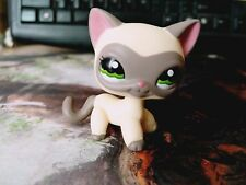 Around The World Masked Siamese Ranch Cat Green Eyes  Littlest Pet Shop LPS 1116