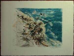 BRUNO FANESI litografia Alghe e Gabbiani sulla spiaggia  54x44  1970 pubblicata