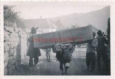 Foto, Blick auf einen armen Lastesel in Griechenland (N)1845