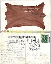 1907 Rocky Ford Colorado Skin or Be Skinned  VINTAGE POSTCARD