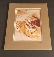 RARE SEALED FRAMED CLAUDE HAYCRAFT ART PHOTOGRAPH OF A TIGER 332R AUTOGRAPHED 4/