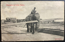 1900s Ceylon RPPC Postcard Cover To Zeeland Netherlands Elephants At Work