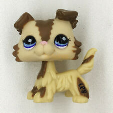 Littlest Pet Shop RARE Mocha Brown Tan Collie Dog Puppy Blue Eyes LPS Toys #2210