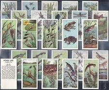 ANONYMOUS TRADE-FULL SET- POND LIFE - ANIMALS INSECTS (25 CARDS) - EXC+++