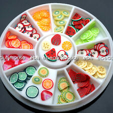 11 Styles Fruit Slices DIY Nail Art Decoration Accessories+ Wheel #047A