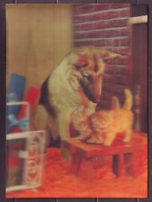 3 D Lenticular Stereo Postcard Animals Dog Shephard keep 2 kittens