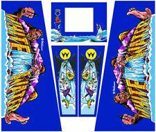 WHITEWATER Pinball Machine Cabinet Decals - NEXT GEN - LICENSED