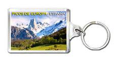 PICOS DE EUROPA ESPAÑA KEYRING SOUVENIR LLAVERO