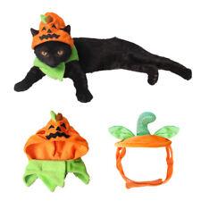 More details for cat dog pet halloween pumpkin hat cute carnival ghost festival costume decor