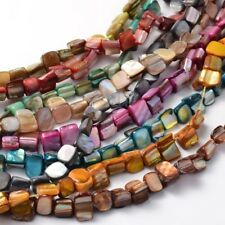 10strands Irregular Sea Shell Beads Dyed Mixed Color Shell Chip Gemstone Beads
