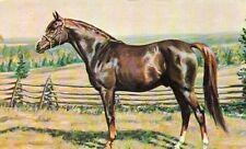 "Pferdepostkarte Pferd USA Vollblutaraber ""SIKHTIYARIN"" Gemälde horse postcard"