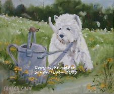 WEST HIGHLAND TERRIER DOG NEW ORIGINAL OIL PAINTING CANVAS SANDRA COEN ARTIST