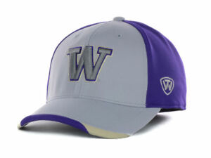 Washington Huskies Men's Top of the World NCAA Grizzly One-Fit Flex Hat Cap
