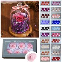 4-6CM /37Colors 6PCS/Box Preserved Fresh Rose Flower 100% Real Natural