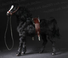 1/6 Scale WWII Army WAR HORSE Black color
