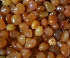 12-18  Red Carnelian Natural bulk tumbled Gem stone 1/4lb