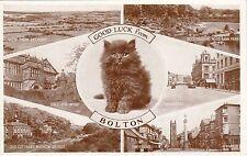 Black Cat Multiview, BOLTON, Lancashire
