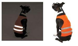 Orange Reflective Dog Safety Vest Camp, Hunt, Night Walks Bright! Visibility!