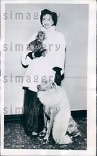 1951 Fashionable Boston Woman in Furs With Dogs at Fashion Show Press Photo