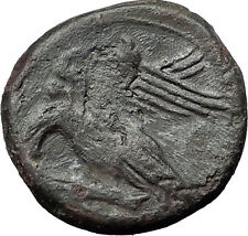 AKRAGAS in SICILY 287BC Ancient Greek Coin Phintias Zeus Eagles Rabbit i58765
