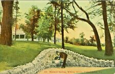 Willow Grove PA The Natural Spring, Willow Grove Park 1910
