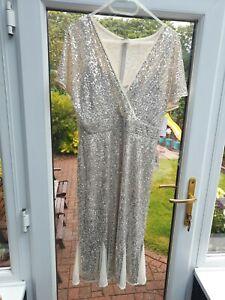 R&M Richards Champagne Sequin Dress Bnwt Size 14