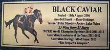 "BLACK CAVIAR "" NEW"" Best Sprinter 25 Wins  25 races RETIRED  FREE POSTAGE"