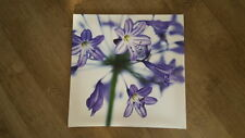 Large Canvas Picture lilac flowers image photograph