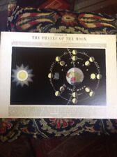 Twelve Victorian Astronomical Diagrams Greaves & Thomas