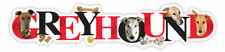 Greyhound Alphabet Magnetic Decal 4 Car or Home 100% Donation 2 cure K9 Cancer
