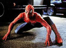 PHOTO SPIDER-MAN 2 - TOBEY MAGUIRE  (P1) FORMAT 20X27 CM