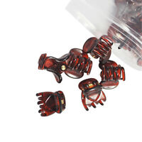 12Pcs Plastic Mini Coffee Hairpin 6 Claws Hair Clips Clamp Accessories For Women