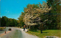 Postcard Entrance and Dogwood Time, Pokagon State Park, Angola, IN