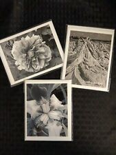 Sweet Owen (County, Kentucky) Pics Black & White Photographs Blank Cards Artwork