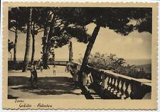 carte postale ARRET faucon gerfaut-belvédère
