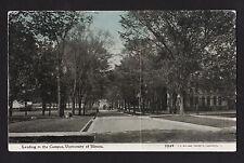c1911 road leading to Campus Universsity of Illinois Urbana Champaign postcard