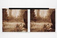 Il Gros Pesce Foto Placca Stereo 6x13cm Vintage