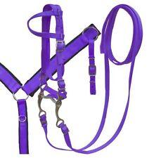 PURPLE Nylon Single Ear Bridle, Breast Collar & Grazing Bit Set! NEW HORSE TACK!