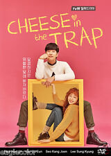 Cheese in the Trap Korean Drama (4DVDs) Excellent English & Quality!