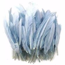 Goose Blue Craft Feathers
