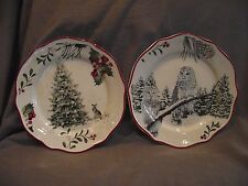 Set of 2 Better Homes Winter Forest Salad Plates - Snowy Owl and Tree