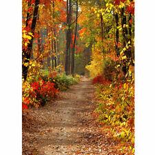 5x7FT Herbst Herbst Wald Fotografie Vinyl Hintergrund Studio Foto Backdrops Neu