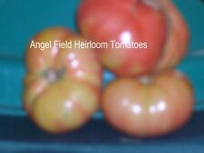 """20 Bonney Best Heirloom Tomato Seeds From Wyoming History Called """"Geswein Purple"""