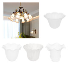 Clear Glass Ceiling Fan Light Chandelier Wall Sconce Light Lamp Shades Cover