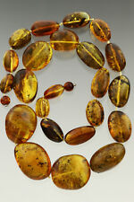All Beads FOSSIL INSECTS Huge Genuine BALTIC AMBER Necklace 84.5g 180910-3